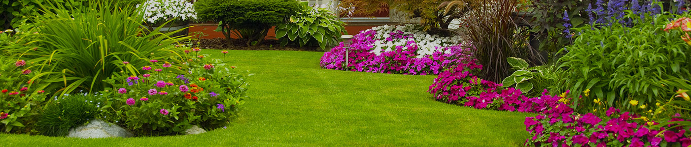 Chesterfield Drainage Services, Landscaping Experts